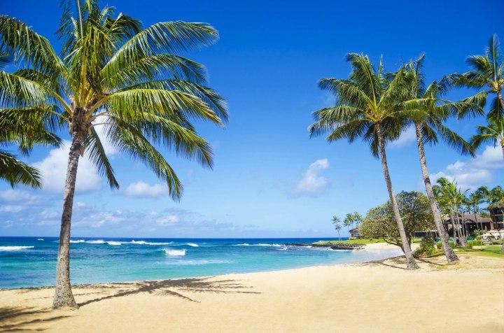 poipu-beach-kaui