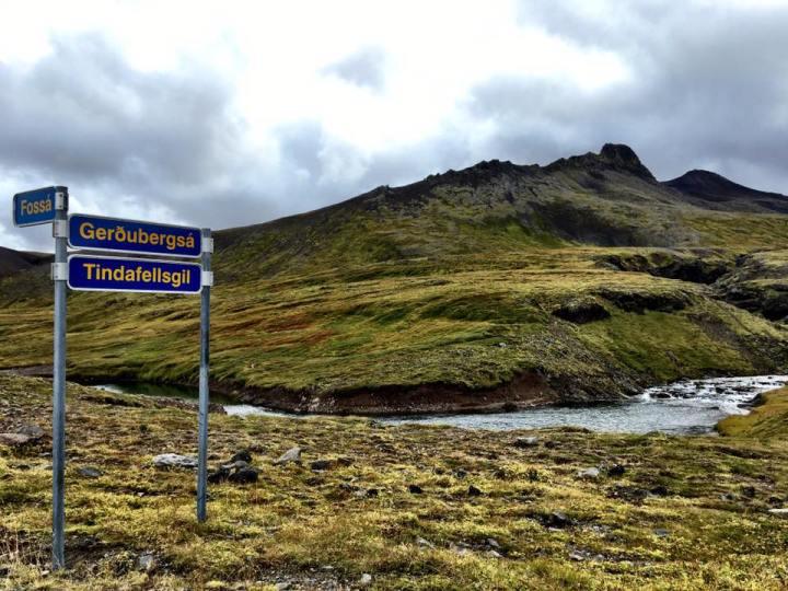 islandeyulair13